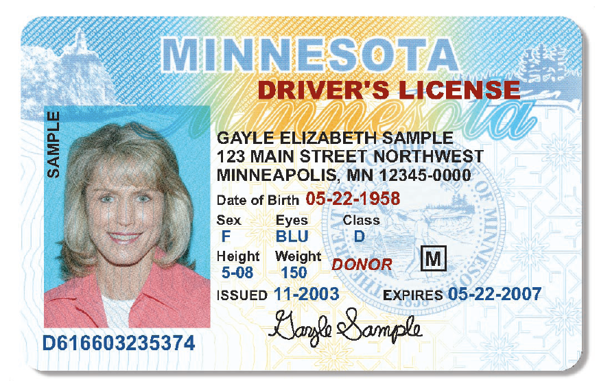 Real and Registered Driver's License